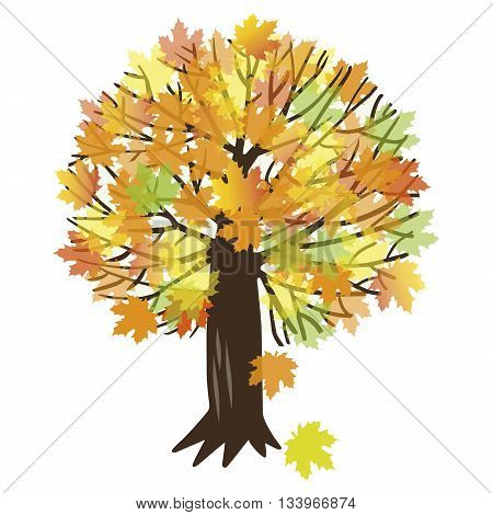 Vector illustration of autumn maple tree with falling leaves