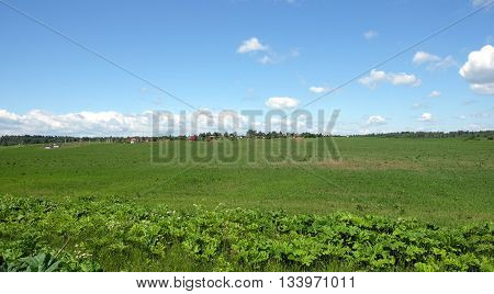 Country landscape with green field and a village far away on summer day. Horizontal view