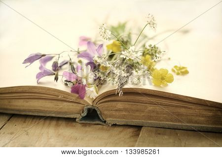 Old book with bouquet of wild flowers, nostalgic vintage background