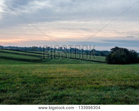 Lexington Kentucky area horse pasture at sunrise