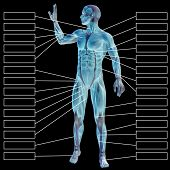 3D illustration of a concept or conceptual human man anatomy and muscle for sport and textbox on blue background poster