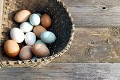 Recently gathered farm fresh eggs from a Tennessee farm poster