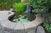 Garden Backyard pond with waterfall water plants brick paver patio trellis landscaping poster