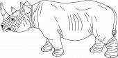 vector - -rhino contour isolated on white background poster