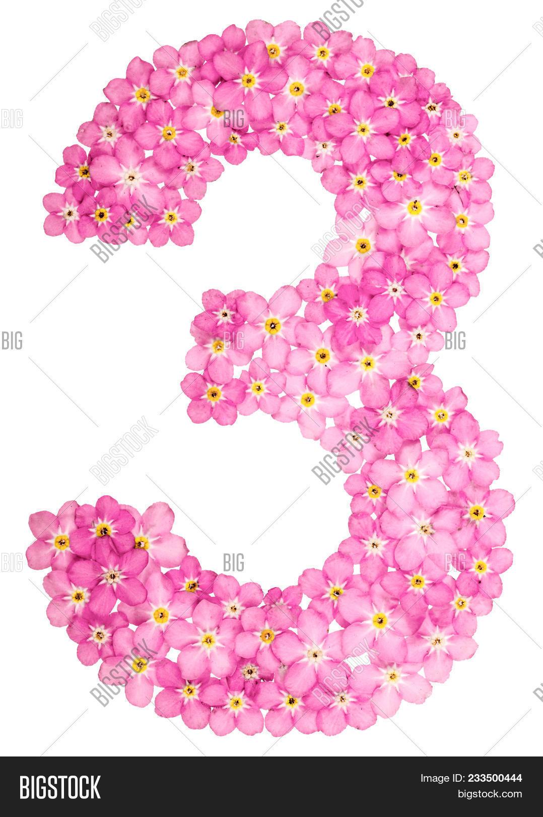 Arabic Numeral 3 Image Photo Free Trial Bigstock