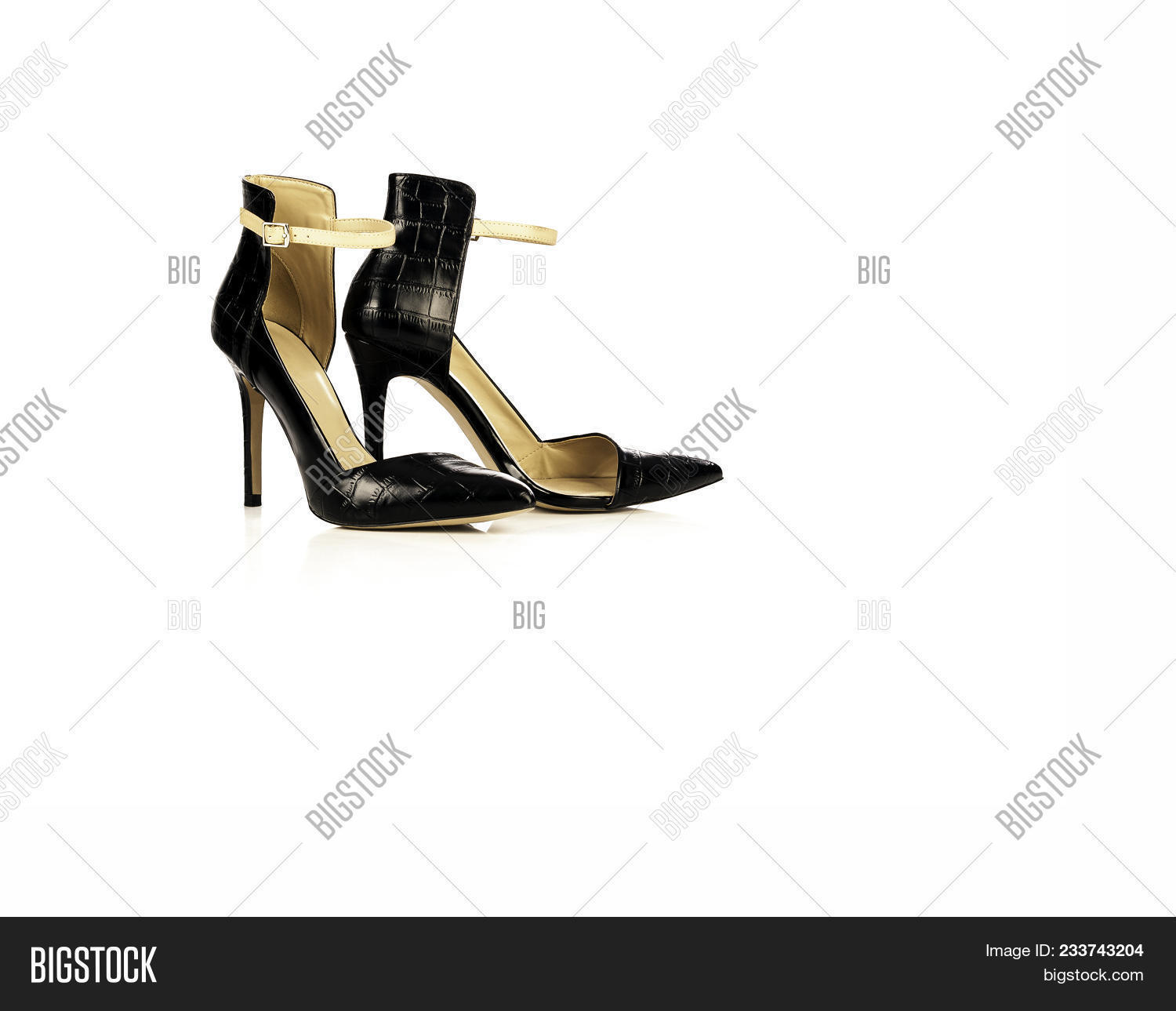b2e0531ae631 Black Leather Elegant And Stylish Women Shoes With High Heel Isolated On White  Background