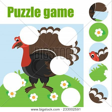 Puzzle For Toddlers. Matching Children Educational Game. Match Pieces And Complete The Picture. Acti