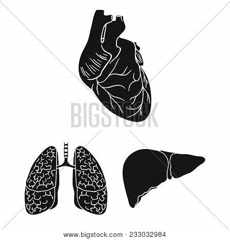Human Organs Black Icons In Set Collection For Design. Anatomy And Internal Organs Vector Symbol Sto