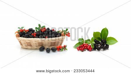 Berries Isolated On White Background. Horizontal Photo.