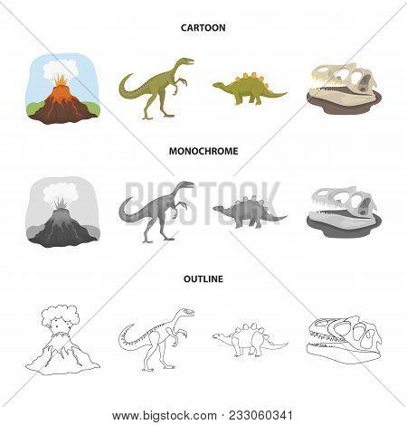 Volcanic Eruption, Gallimimus, Stegosaurus, Dinosaur Skull. Dinosaur And Prehistoric Period Set Coll
