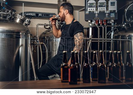 Black Bearded Tattooed Hipster Male Manufacturer Tasting Beer In The Microbrewery.