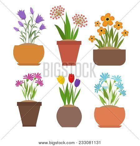 Garden Spring Flowers In Flower Pots Vector Set. Plant And Flower Garden, Floral Gardening And Bloss