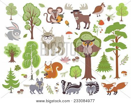 Big Set Of Wild Forest Animals Birds And Trees. Cartoon Forest Isolated On White Background. Wild Fo