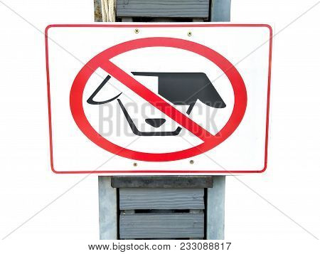 No Dogs Allowed Sign On Old Steel Pole  Isolated On White Background