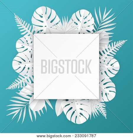 Tropical Paper Palm, Vector & Photo (Free Trial) | Bigstock