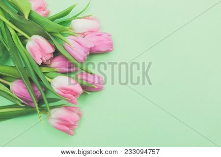 First Spring Bouquet Of Pink Tulips On Light Green Background Top View Copy Space. Beautiful Spring