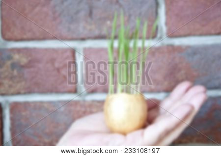 Blurred Background With Concept Of Ecology And Environment, Healthy Food, Egg Hunt. Earth Day Holida