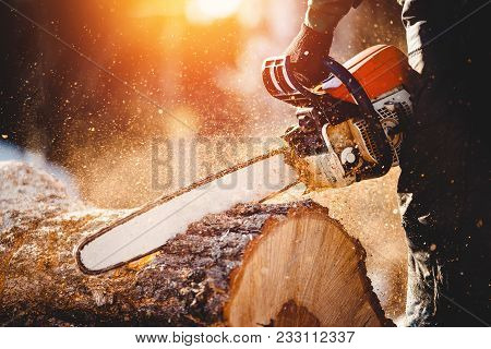 Chainsaw. Close-up Of Woodcutter Sawing Chain Saw In Motion, Sawdust Fly To Sides. Concept Is To Bri