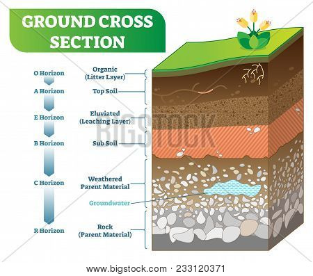 Ground Cross Section Vector Illustration With Organic, Topsoil, Subsoil And Other Horizon Levels. Ge