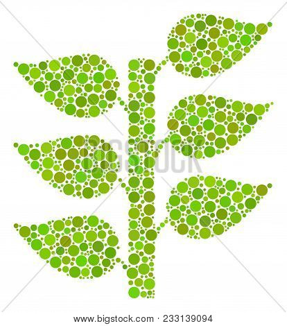 Flora Plant Collage Of Dots In Various Sizes And Color Shades. Circle Dots Are Combined Into Flora P