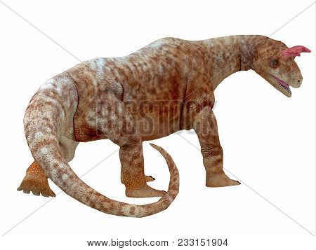 Shringasaurus Dinosaur Tail 3d Illustration - Shringasaurus Was A Herbivorous Sauropod Dinosaur That