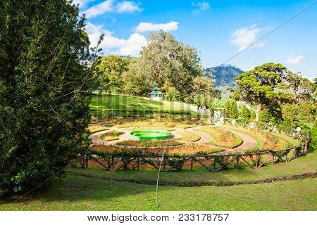 Nuwara Eliya, Sri Lanka - February 22, 2017: Hakgala Botanical Garden In Nuwara Eliya, Sri Lanka. Ha