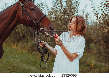 A Woman Dressed In A White Dress, Feeds A Horse With A Red Apple