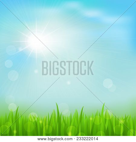 Spring Background With Green Early Spring Grass On Blurred Soft Background. Grassland Blurred Backgr