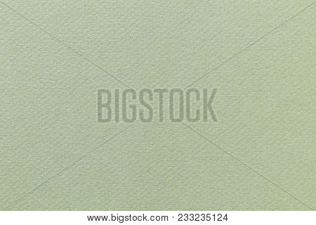 Green paper background with texture; laurel green