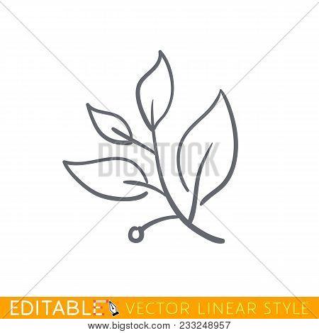 Laurel Branch. Editable Line Sketch Icon. Stock Vector Illustration.