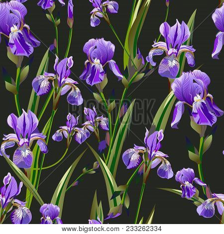 Seamless Pattern With Iris Flowers Is Suitable For Backgrounds, Wallpapers, Clothes And Other Things