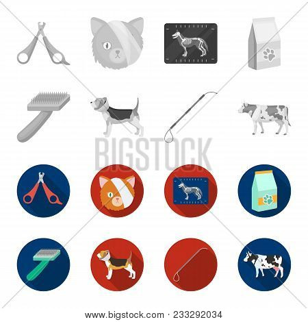 Dog, Cow, Cattle, Pet .vet Clinic Set Collection Icons In Monochrome, Flat Style Vector Symbol Stock