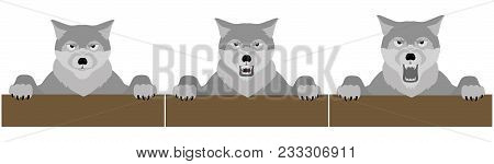 Angry Wolf Head. Beautiful Wolf Illustration. Wild Wolf Vector Stock.