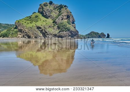 Man And His Dog Walking On Piha Beach With Lion Rock Reflected On The Sand In New Zealand