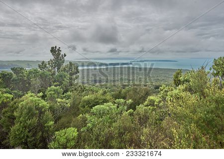 View Across The Hauraki Gulf From Rangitoto Summit New Zealand