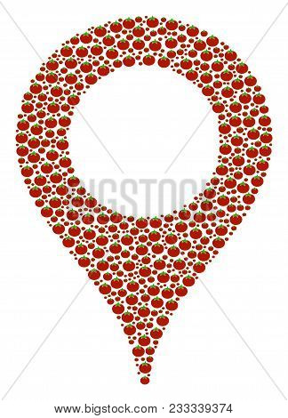 Map Marker Mosaic Of Tomato. Vector Tomato Vegetable Elements Are United Into Map Marker Figure. Nut