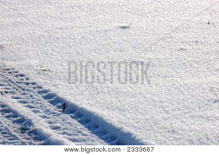 Tire- track print Over Clear Snow