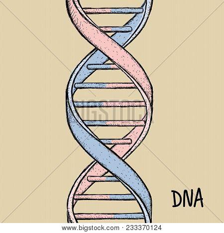 Gold Dna. Dna Symbol. Dna Helix Symbol. Gene Icon. Handdraw Vector Illustration On White Background