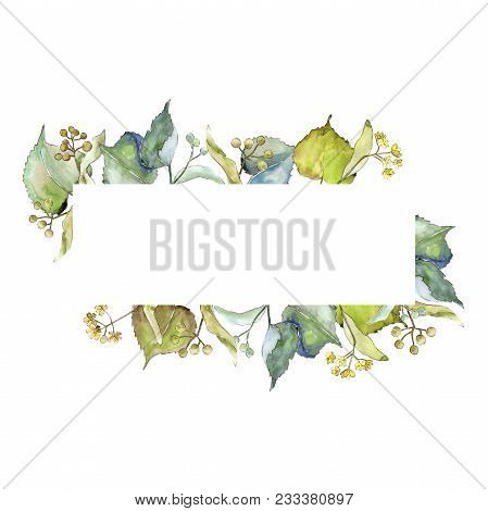 Linden Leaves Frame In A Watercolor Style. Aquarelle Leaf For Background, Texture, Wrapper Pattern,