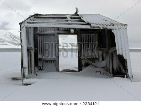 Shelter?