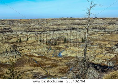 Horse Shoe Canyon In Late Spring, Canadian Badlands In Summer, Drumheller, Alberta, Canada