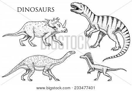 Dinosaurs Tyrannosaurus Rex, Velociraptor, Ceratosaurus, Afrovenator, Megalosaurus, Tarbosaurus, Str