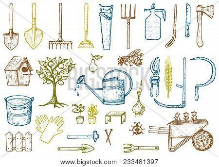 Set Of Gardening Tools Or Items. Hose Reel, Fork, Spade, Rake, Hoe, Trug, Cart, Lawnmower, Elements