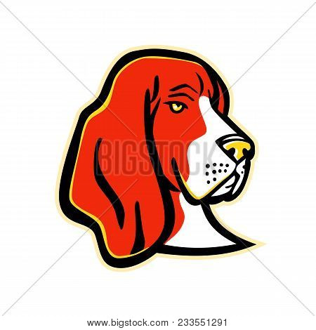 Mascot Icon Illustration Of Head Of A Basset Hound, A Short-legged Dog Breed Of The Scent Hound Fami