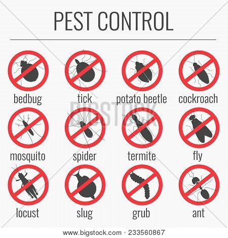 Anti Pest Icon Set With Insects Silhouettes. Red Prohibition Beetle Warning Sign. Perfect For Exterm