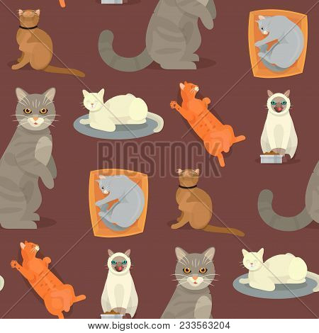 Cat Breeds Cute Kitty Pet Cartoon Cute Animal Character Seamless Pattern Background Illustration. Ma