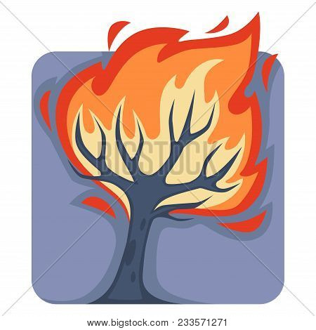 Dangerous Wild Fire That Burns Down Tall Tree. Natural Disaster Caused By Heat Or Human Carelessness