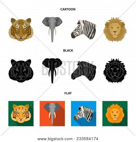 Tiger, Lion, Elephant, Zebra, Realistic Animals Set Collection Icons In Cartoon, Black, Flat Style V