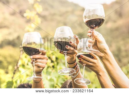 Hands Toasting Red Wine Glass And Friends Having Fun Cheering At Winetasting Experience - Young Peop