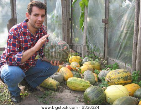 Farmer And Zucchini